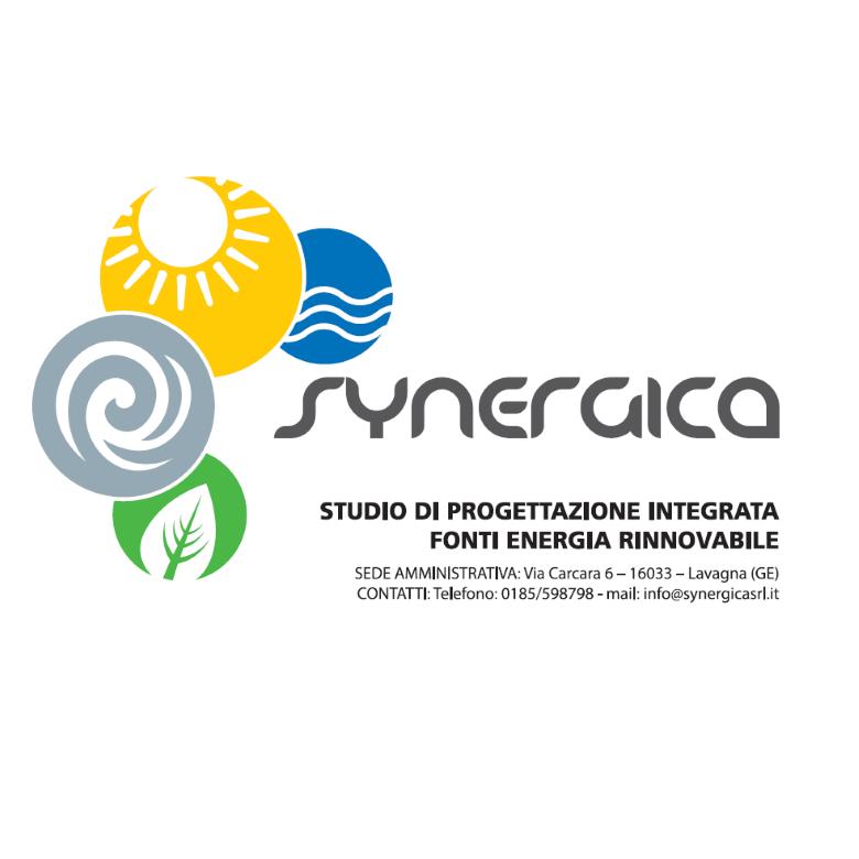 synergica logo – di cosa ci occupiamo